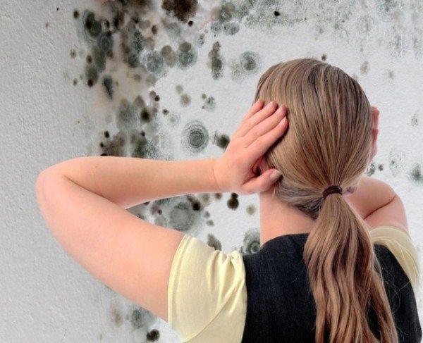 Из-за нарушенного микроклимата возможно появление плесени на стенах